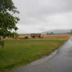 B-RC03-130825-06-RTF_Ober-Mörlen-Streckenimpressionen-vor_Nieder-Weisel-WEB